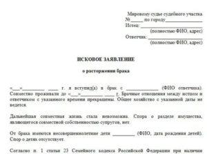 Тольятти централтный район как подать на развод