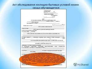 Акт обследования на бесплатное питание малообеспеченной семьи в школе образец