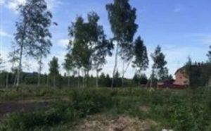Дмитровская земельная кадастровая палата москавская область