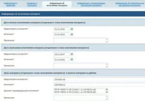 Не вовремя размещен отчет об исполнении контракта штраф