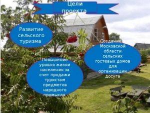 Бизнес план развития сельской территории