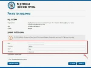 Регистрация ип в спб через мфц