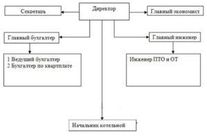 Организационная структура жэу в виде схемы