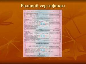Какие нужны документы для получения родового сертификата