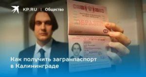 Бесплатный загран паспорт в калининграде условия