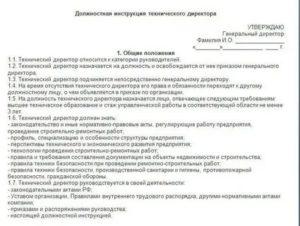 Начальник лнк должностная инструкция