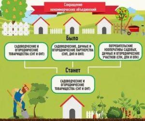 Регистрация садоводческого товарищества пошаговая инструкция