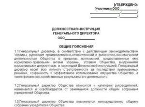 Должностная инструкция директора жку