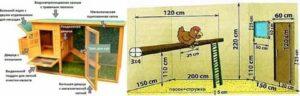 Нормы содержания домашней птицы в частном доме