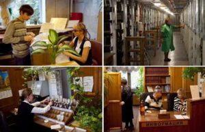 Профессор селезнев собрал большую библиотеку состоящую