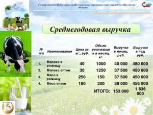 Бизнес план на разведение быков скачать бесплатно