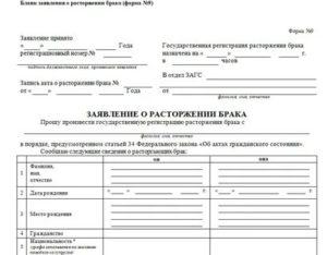 Заявление на развод спб красносельский район через мфц
