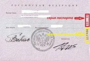 В паспорте сначала идет серия или номер