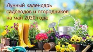 Новые правила для огородников и садоводов 2020 г